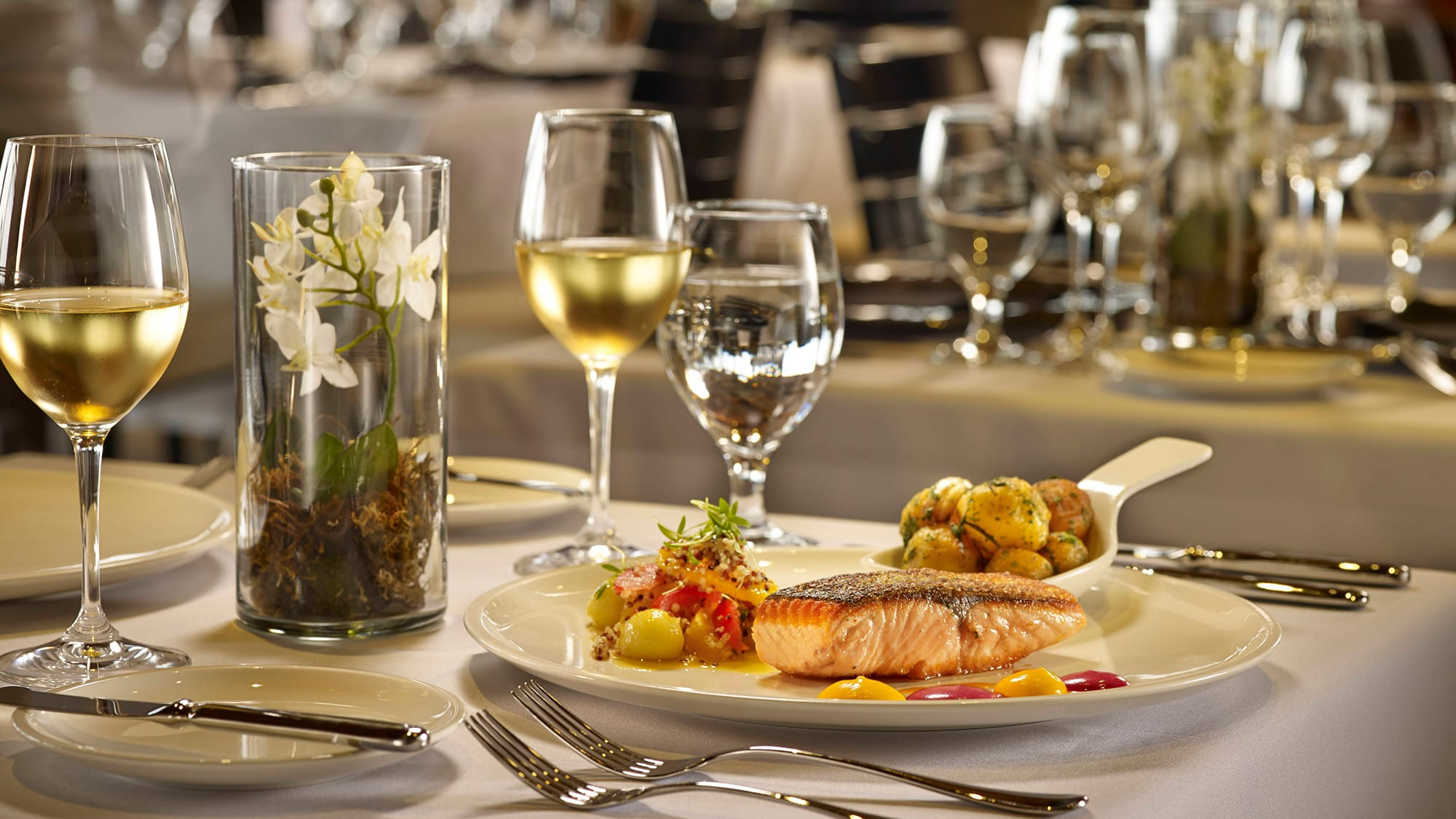 salmon dish set on a table with white wine