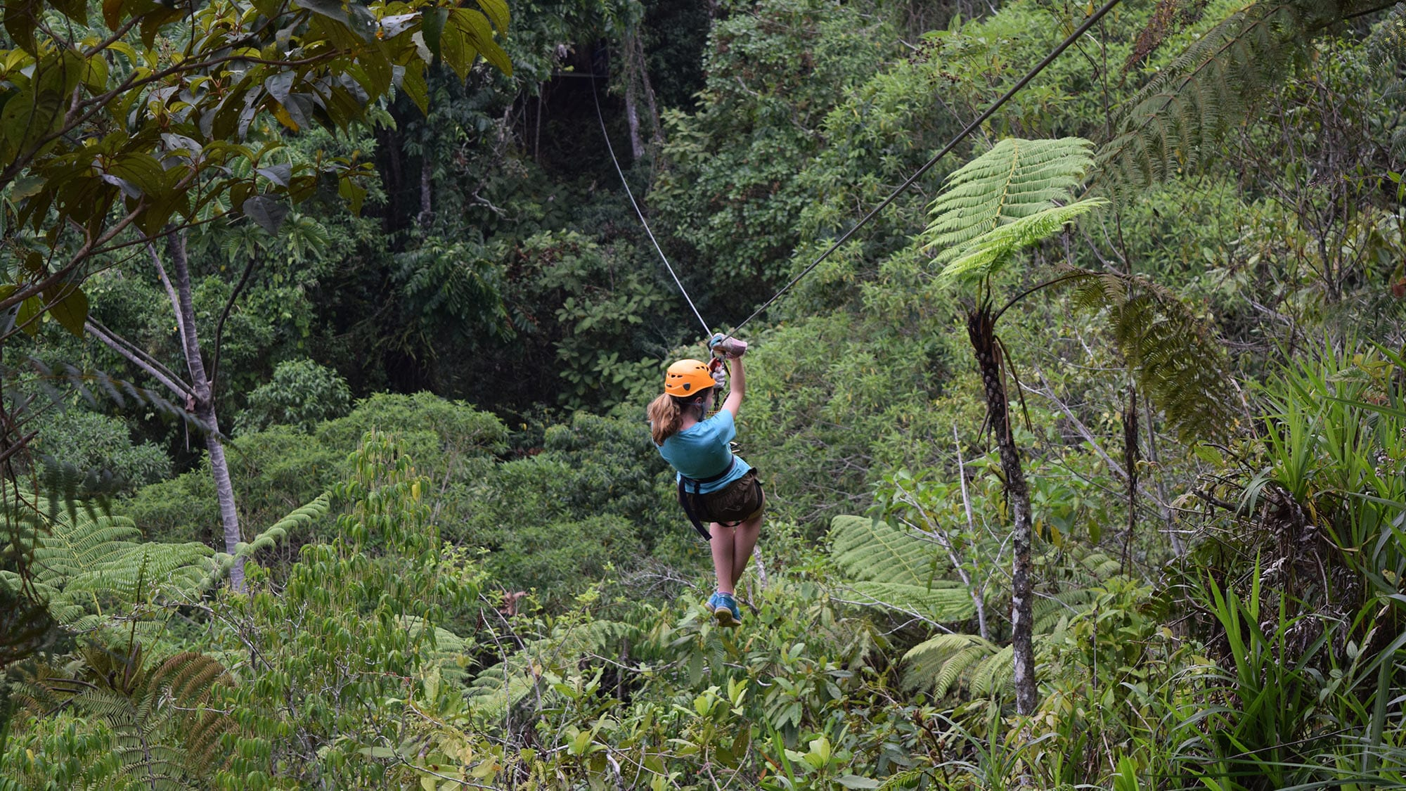 zip-lining in forest