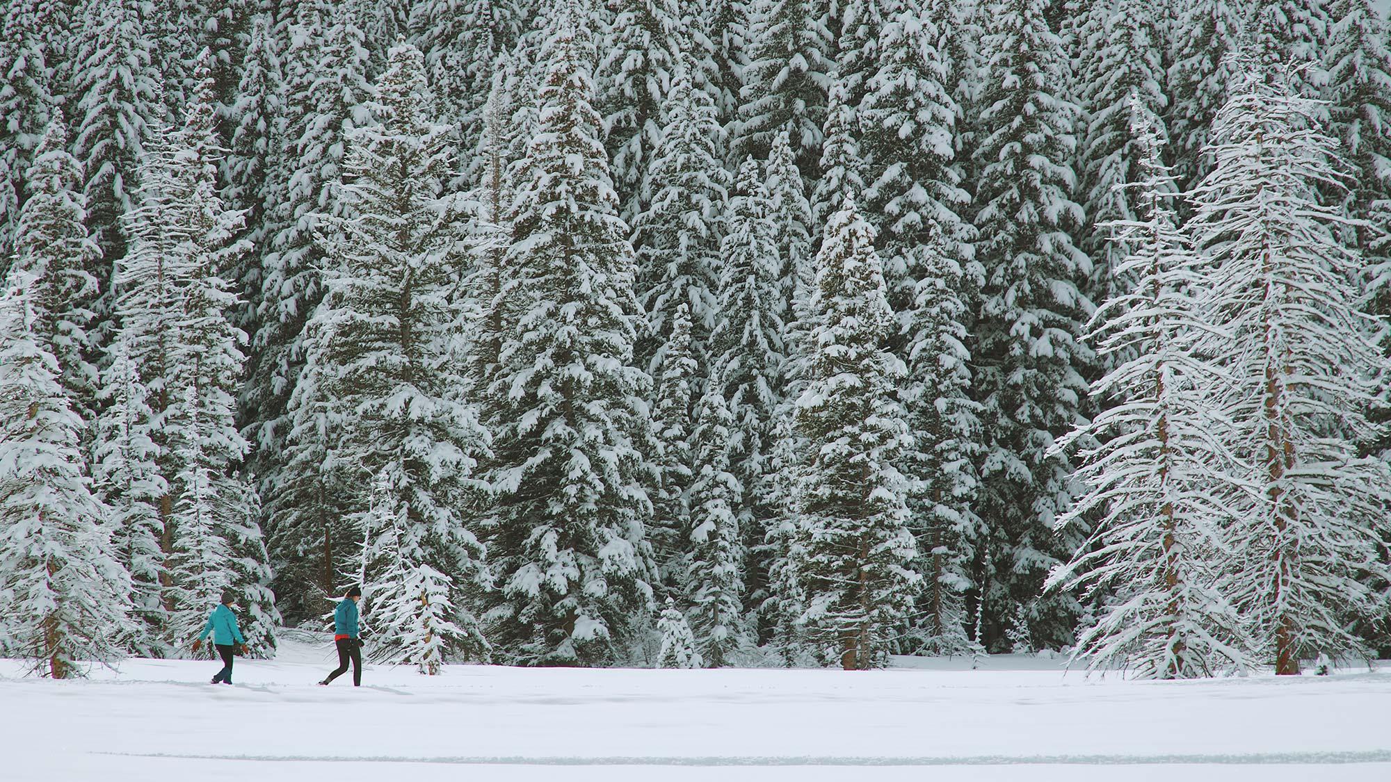 hike through snow