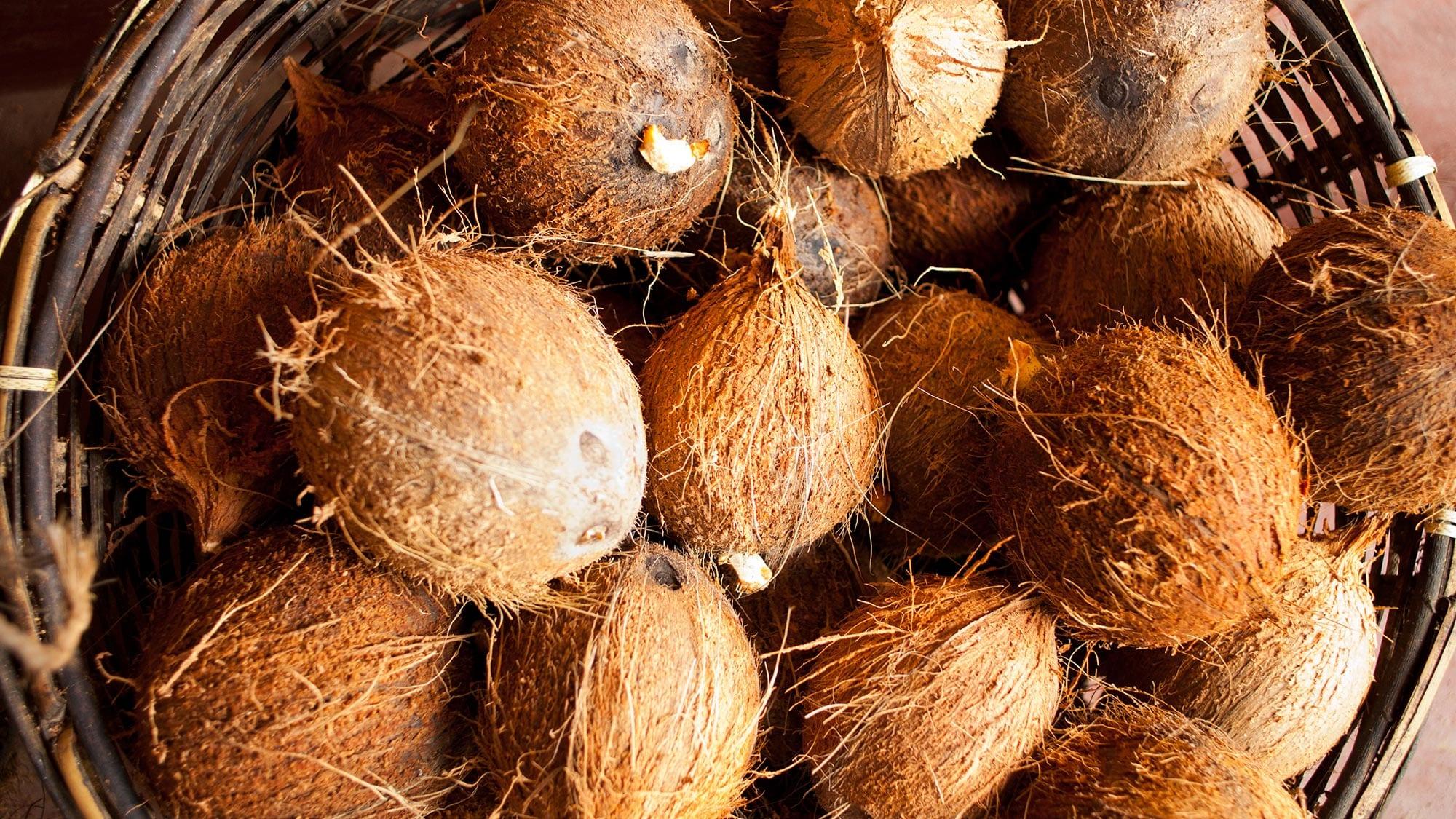 coconuthusking